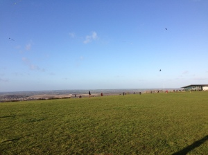 Kites flying and bonus gliders