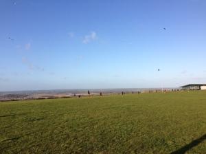 Kites flying and bonus gliders